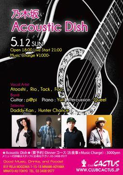 0512_acoustic_fin.jpg